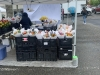 More beautiful bouquets in the rain on April 24th. The Market moved back to Pioneer Park Pavilion around Mother's Day. It runs every Saturday from 9 a.m. to 2 p.m.