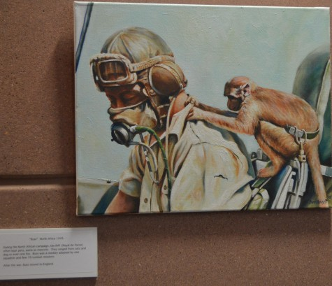 This is a painting by Demarest of Buss the monkey who was adopted by a squadron of the Royal Air Force. The Royal Air Force was the United Kingdom's aerial warfare force.