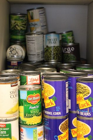 Canned Madness drives to success