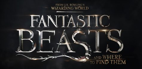 'Fantastic Beasts' Lives Up to Expectations