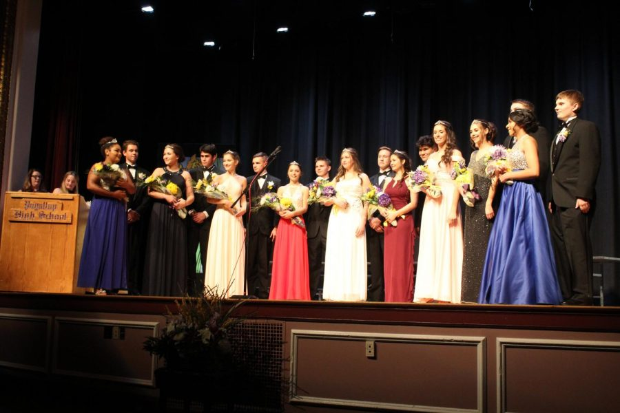 Daffodil Princess Crowned