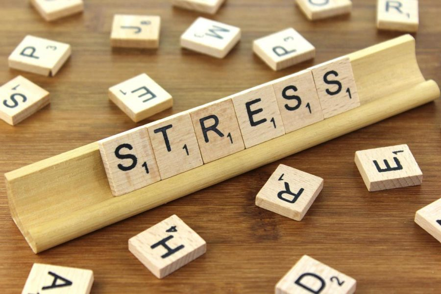 Classes to eradicate student's stress