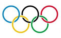 Winter Olympic recap